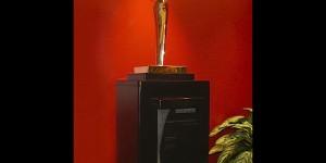 Psion Teklogix bronze staff recognition award